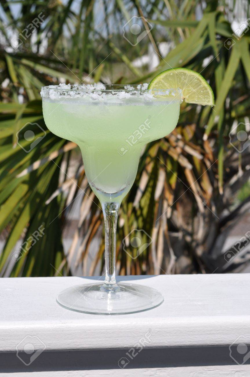 Margarita with lime slice garnish.  Palm tree in background. Stock Photo - 7236782
