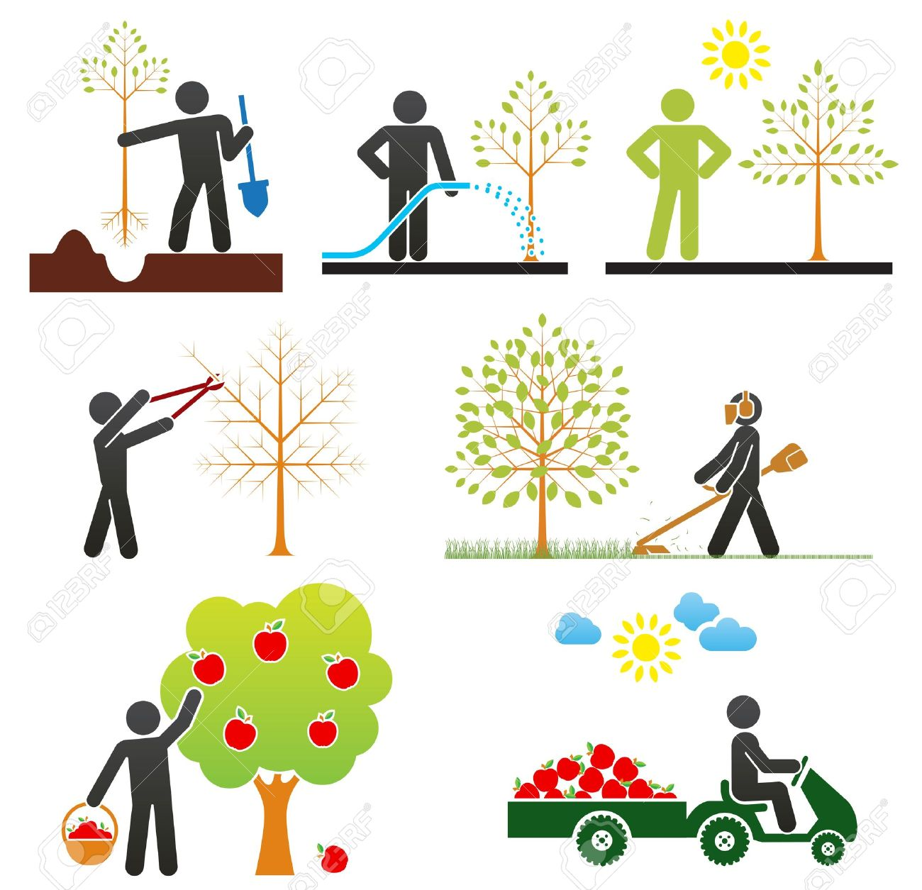 Pictograms representing people taking care of fruit tree - 13718569