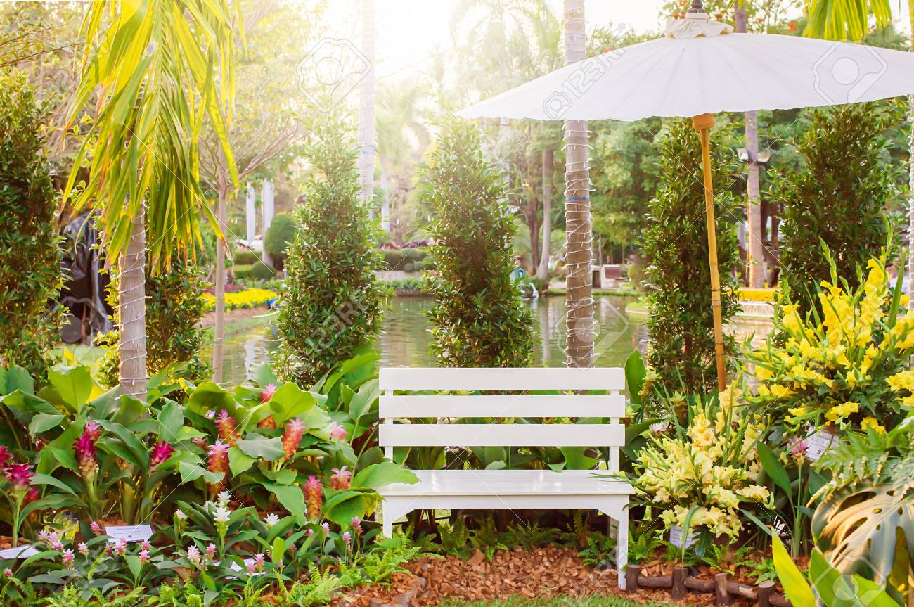White Wood Bench Decorate The Garden With Flowers And Trees Or