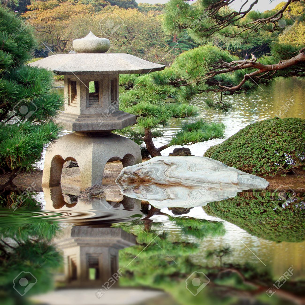 reflection in japanese