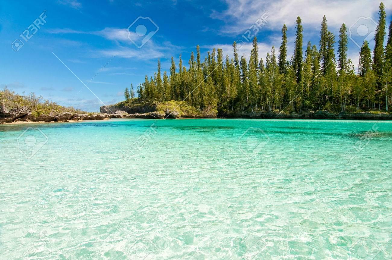 Natural pool of Oro Bay, Isle of Pines, New Caledonia - 53246367