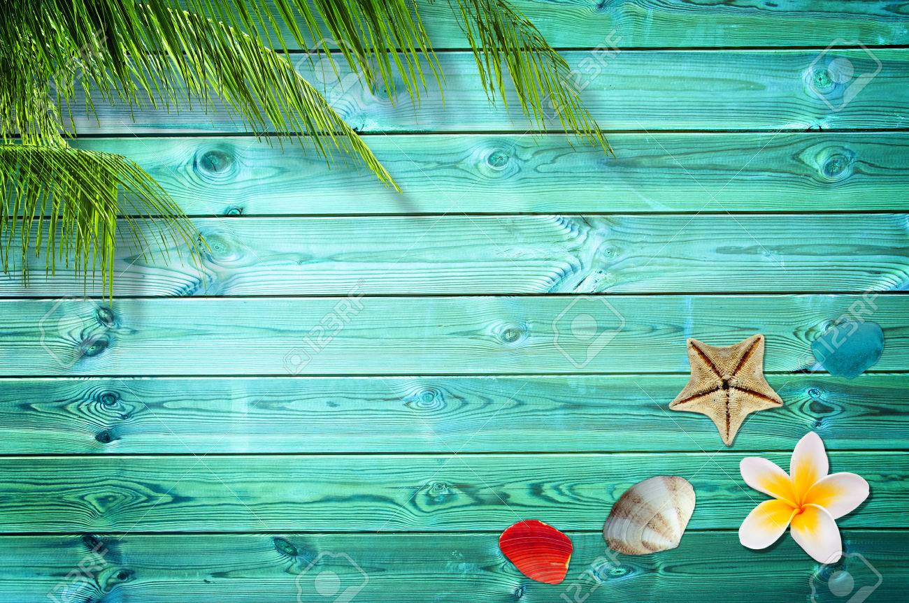 summer background with palm trees and sea shells stock photo