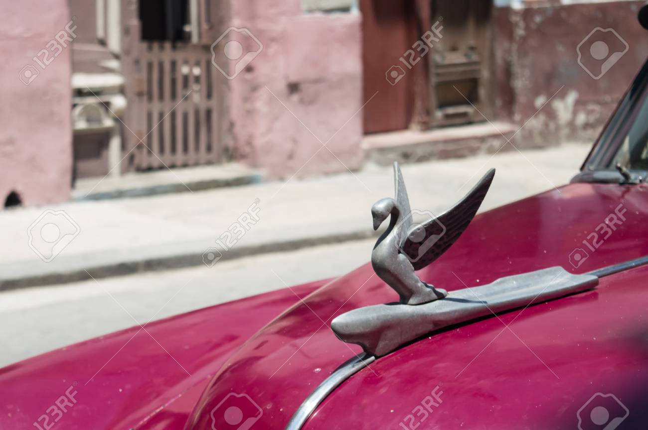 Swan Emblem On A Vintage Car Of The (now Disappeared) Packard ...