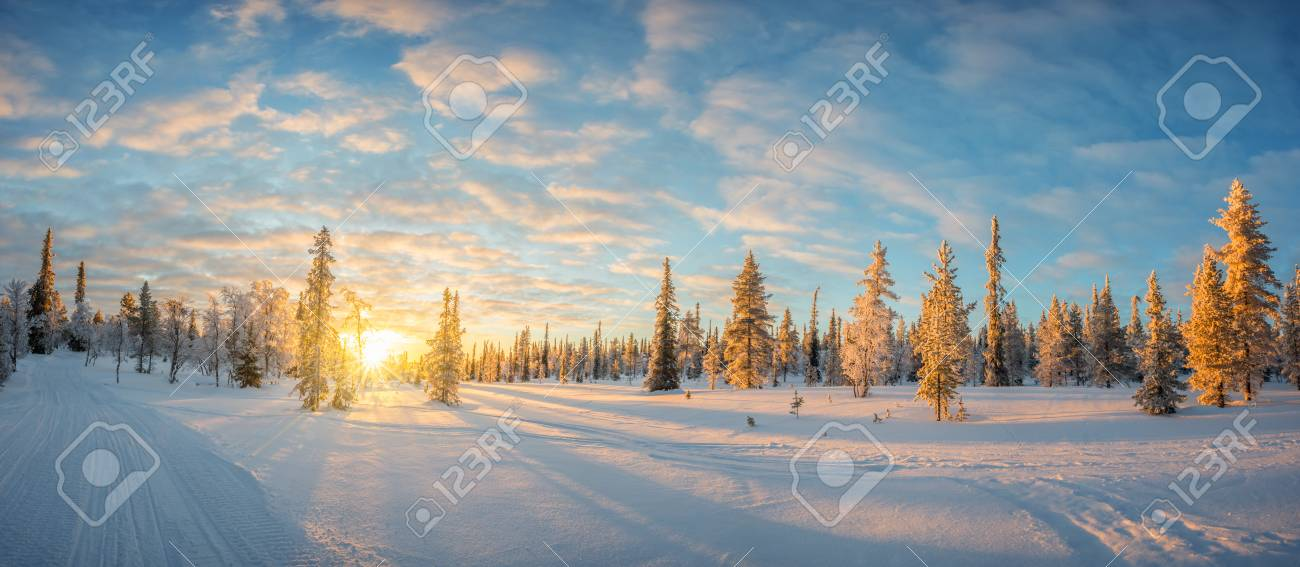Snowy landscape at sunset, frozen trees in winter in Saariselka, Lapland, Finland - 88175797