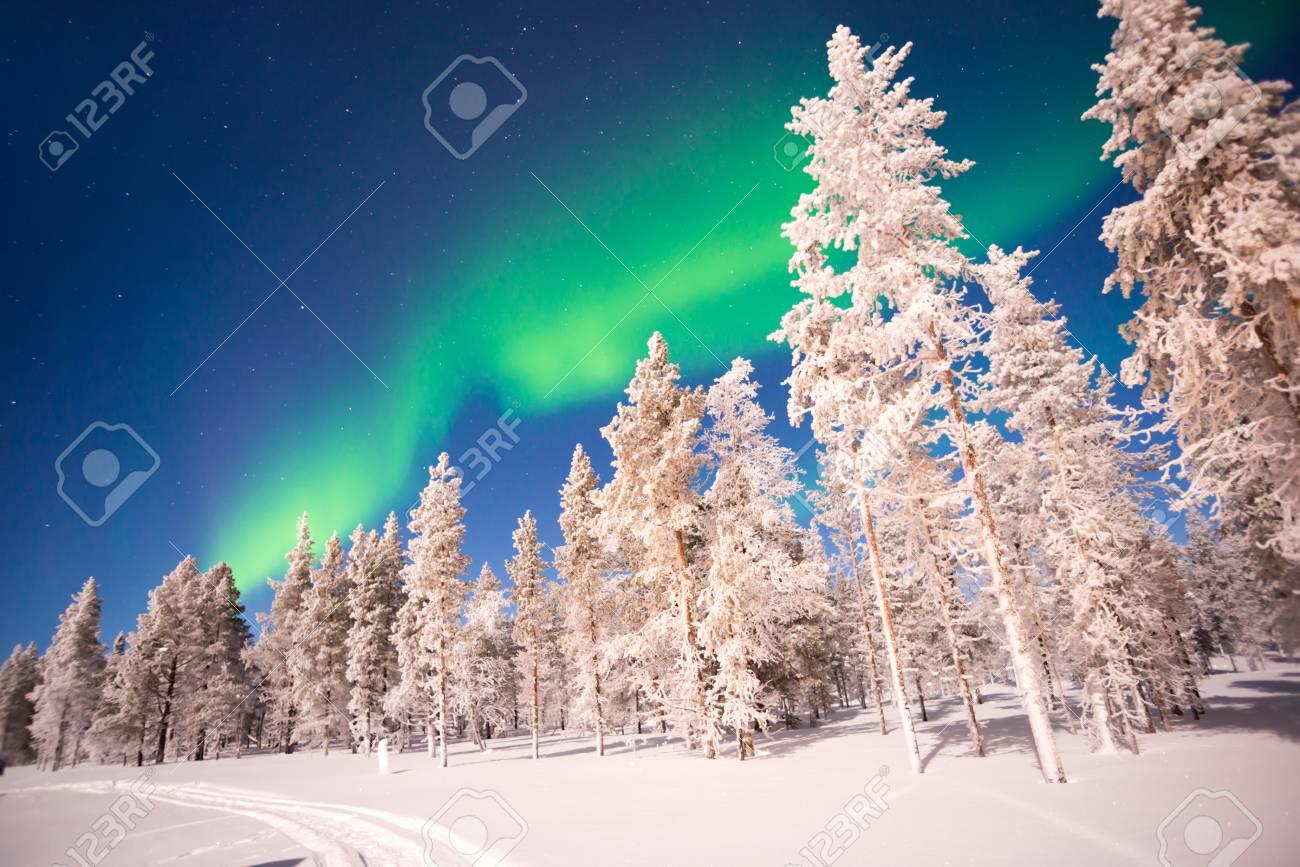 Northern lights, Aurora Borealis in Lapland, Finland - 89279402