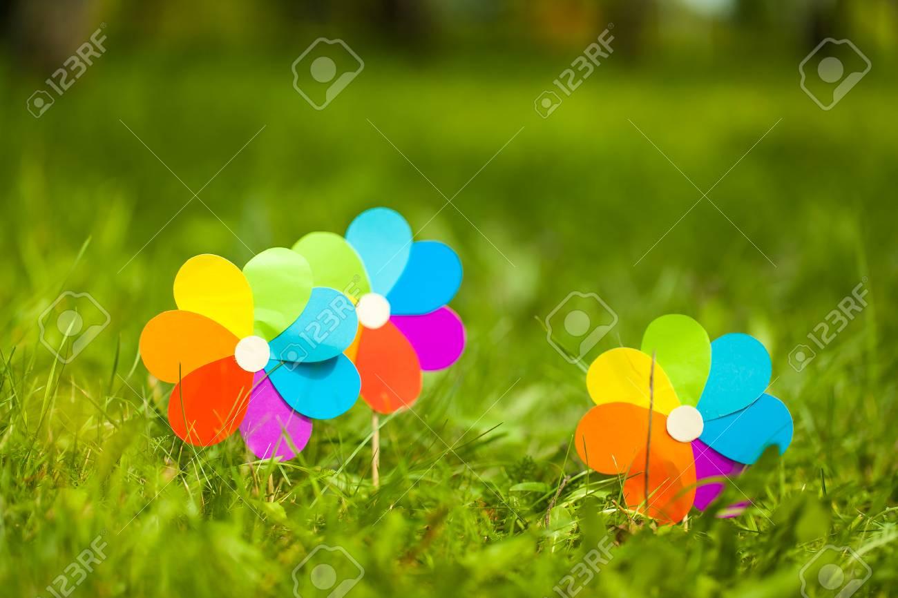 Rainbow Paper Flowers On Green Grass Vibrant Decor For Birthday