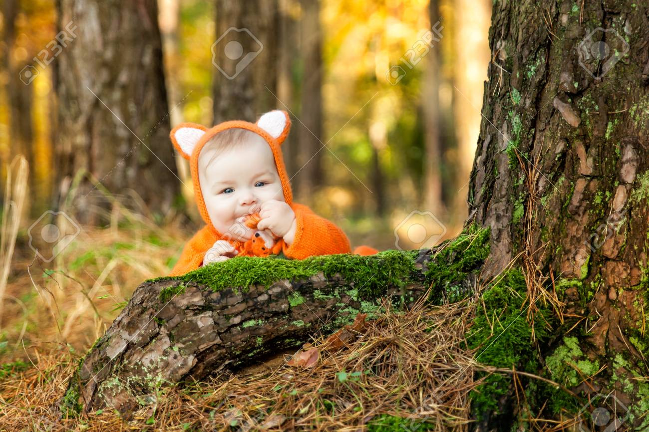 Cute baby girl dressed in fox costume with felted fox toy in autumn forest. Fall  sc 1 st  123RF.com & Cute Baby Girl Dressed In Fox Costume With Felted Fox Toy In.. Stock ...