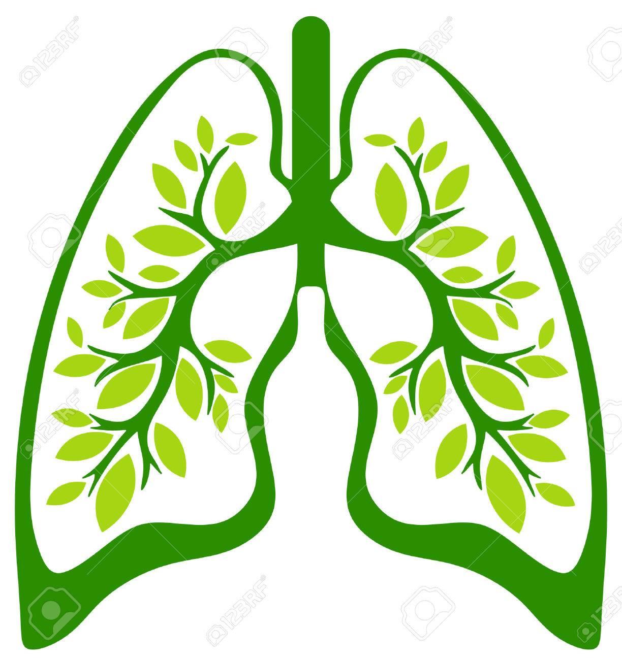 Asociación de imágenes  - Página 18 27048187-el-pulm%C3%B3n-verde