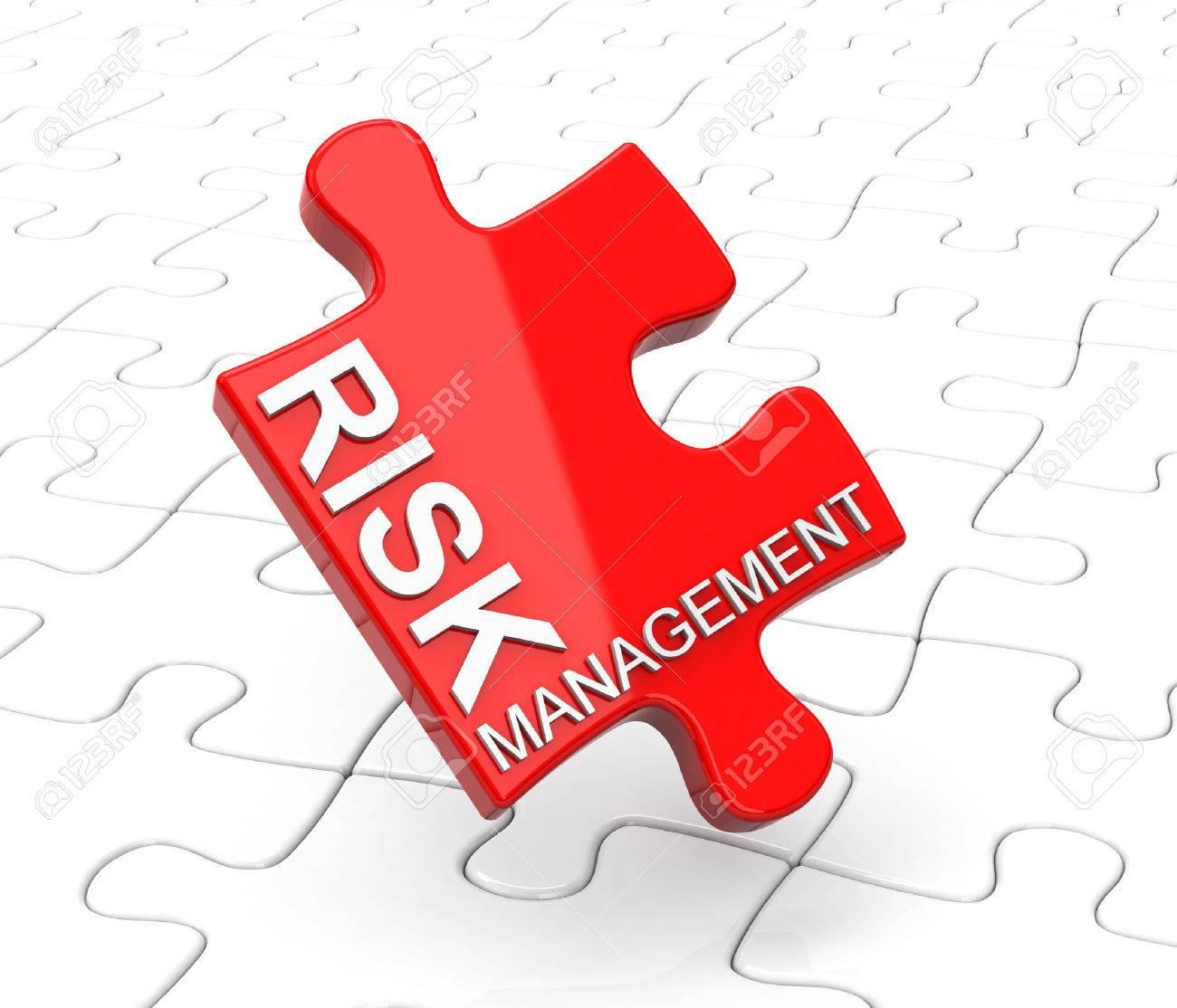 risk management - 28629885