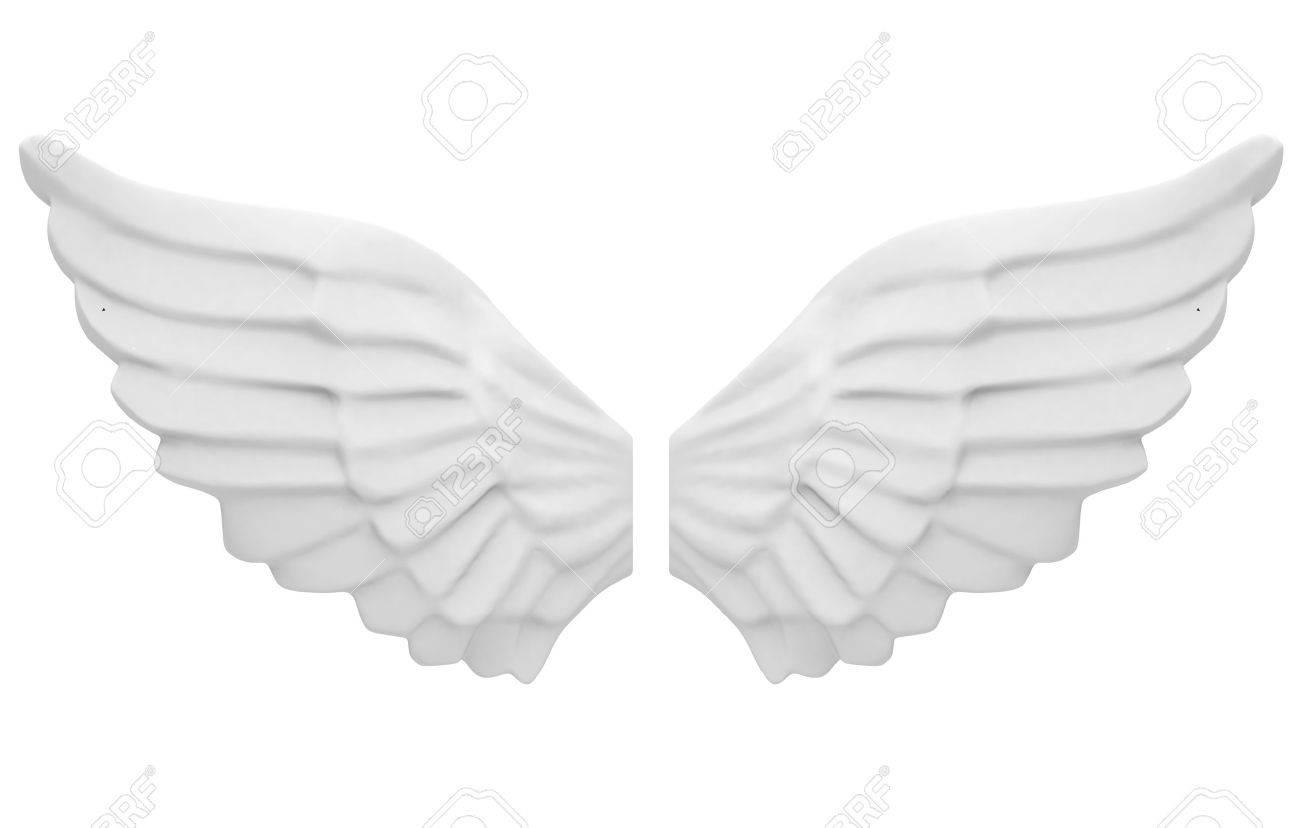 the angel wings - 31444870
