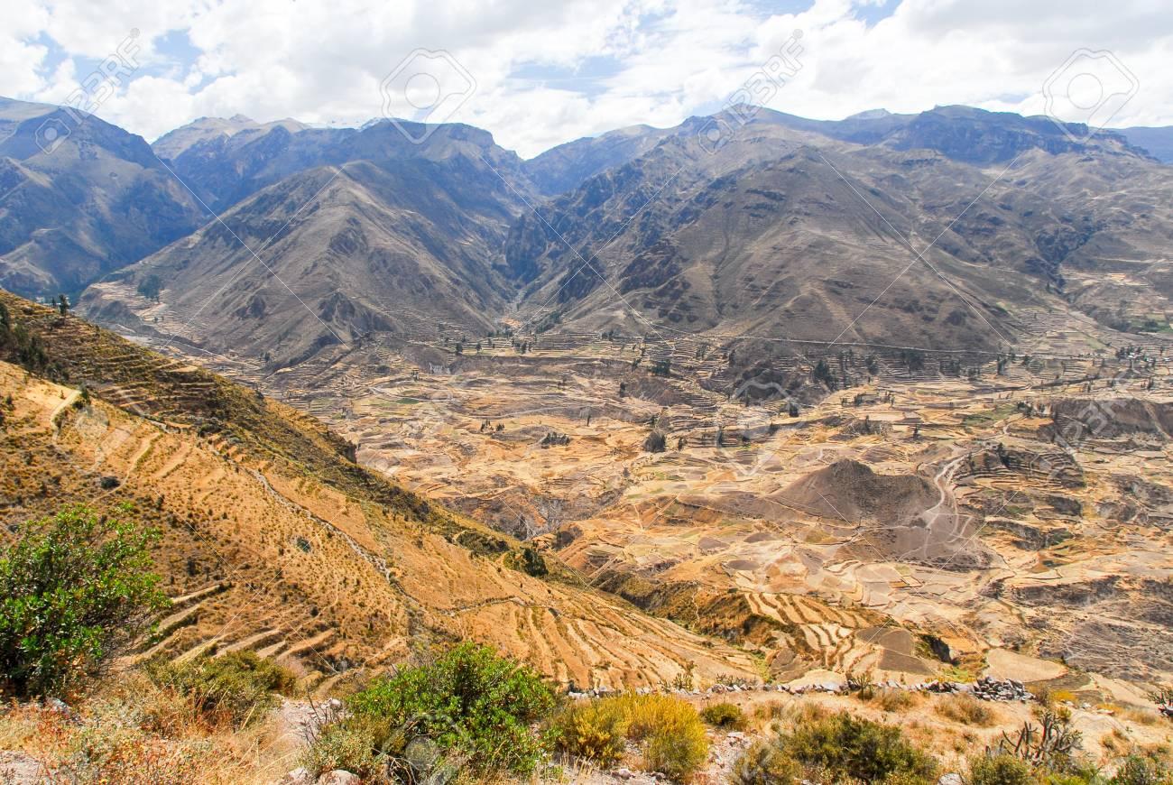 Cañón Del Colca Perú América Del Sur Los Incas Construyeron Terrazas De Cultivo Con Estanque Y El Acantilado Uno De Los Cañones Más Profundos Del