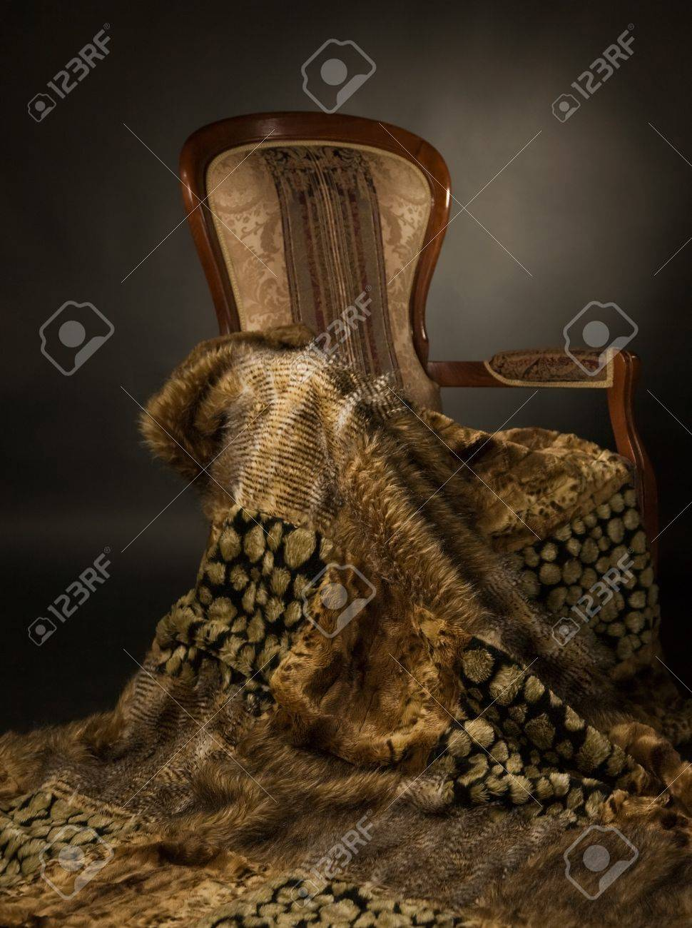 Elegant chair with a fur blanket Stock Photo - 9058299