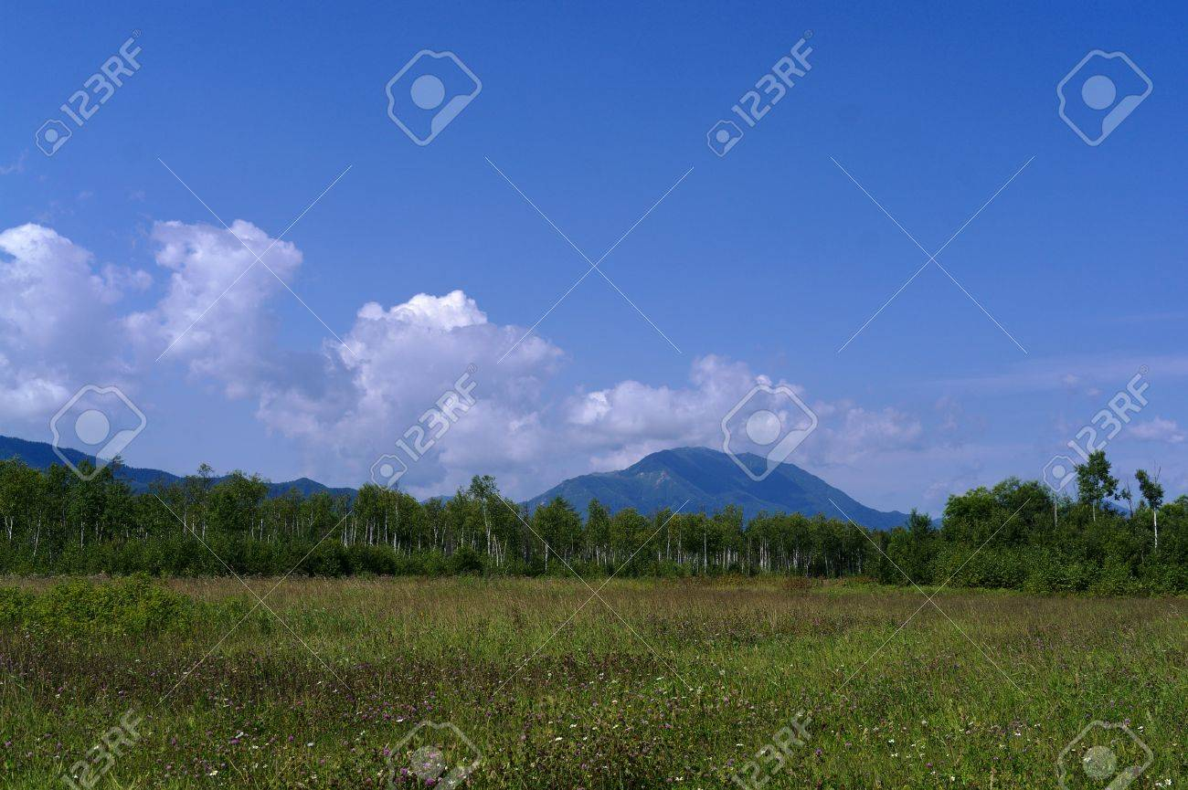 Mountain Ledyanaya  Sakhalin McKinley  in August Stock Photo - 17188471