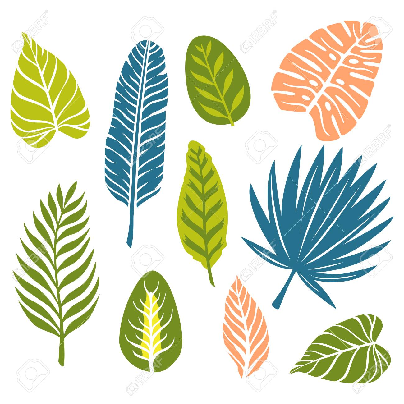 Set Of Hand Drawn Doodle Tropical Leaves Vector Illustration Royalty Free Cliparts Vectors And Stock Illustration Image 106753852 A set of 28 beautifully hand drawn tropical floral elements in black. set of hand drawn doodle tropical leaves vector illustration