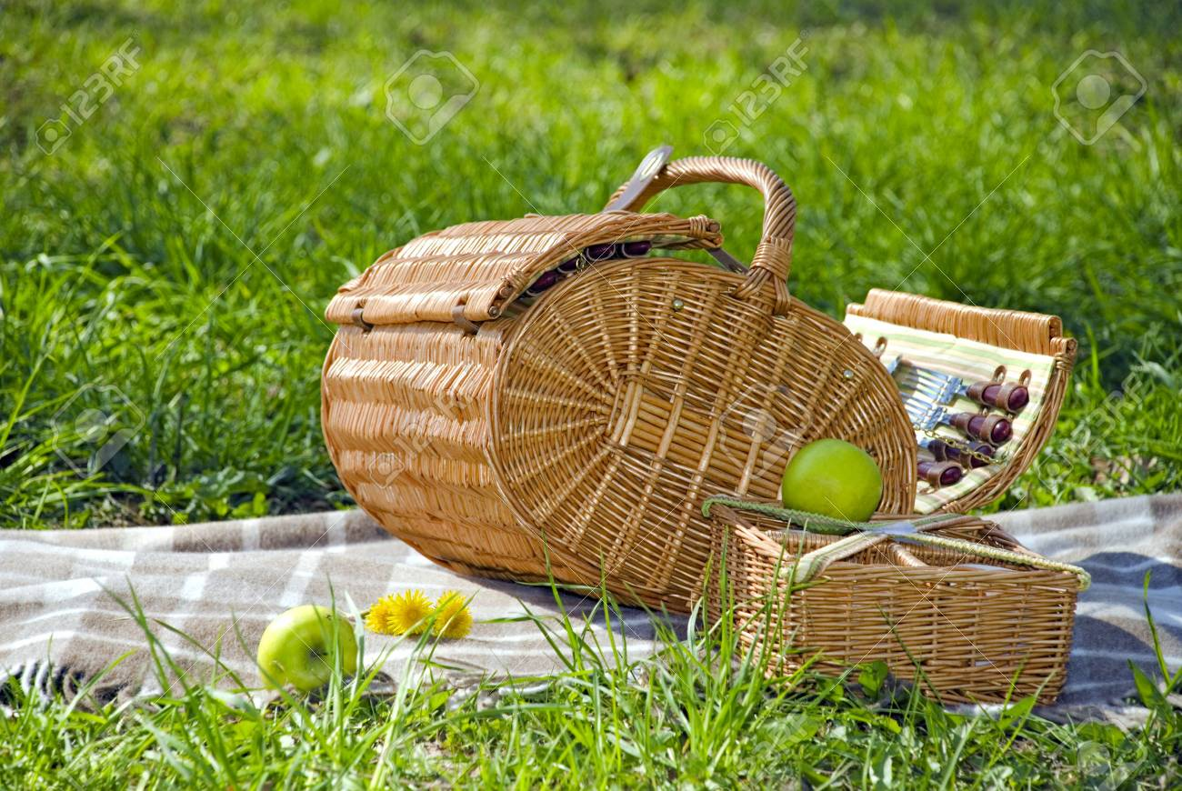 basket for the picnic with dandelions on the plaid Stock Photo - 4691615