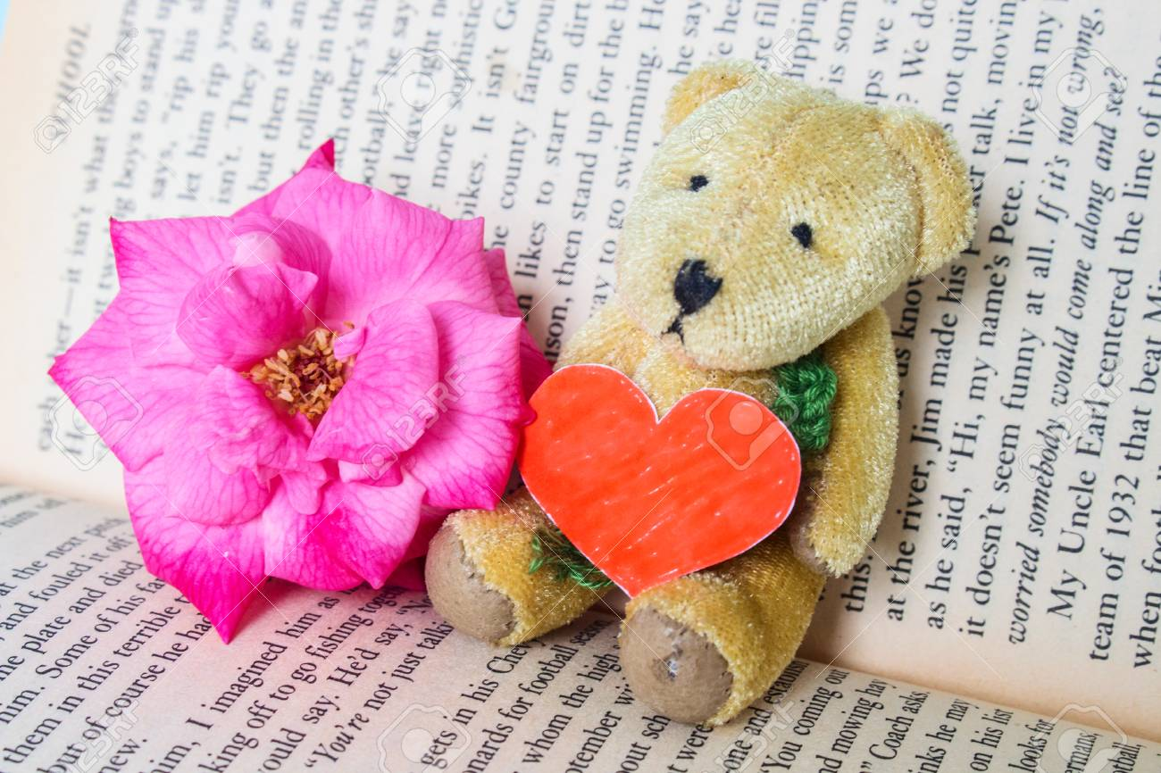 Bear Doll Hold Red Love Made By Paper Seat Lean On Book With Stock