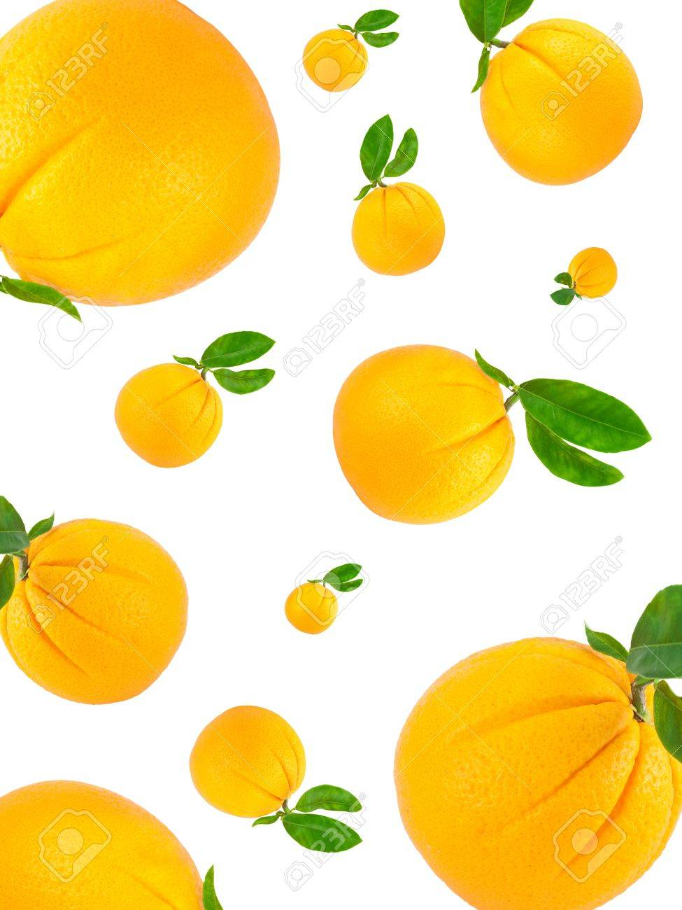 Orange  with green leaves   making a border Isolated on a white background Stock Photo - 11618258