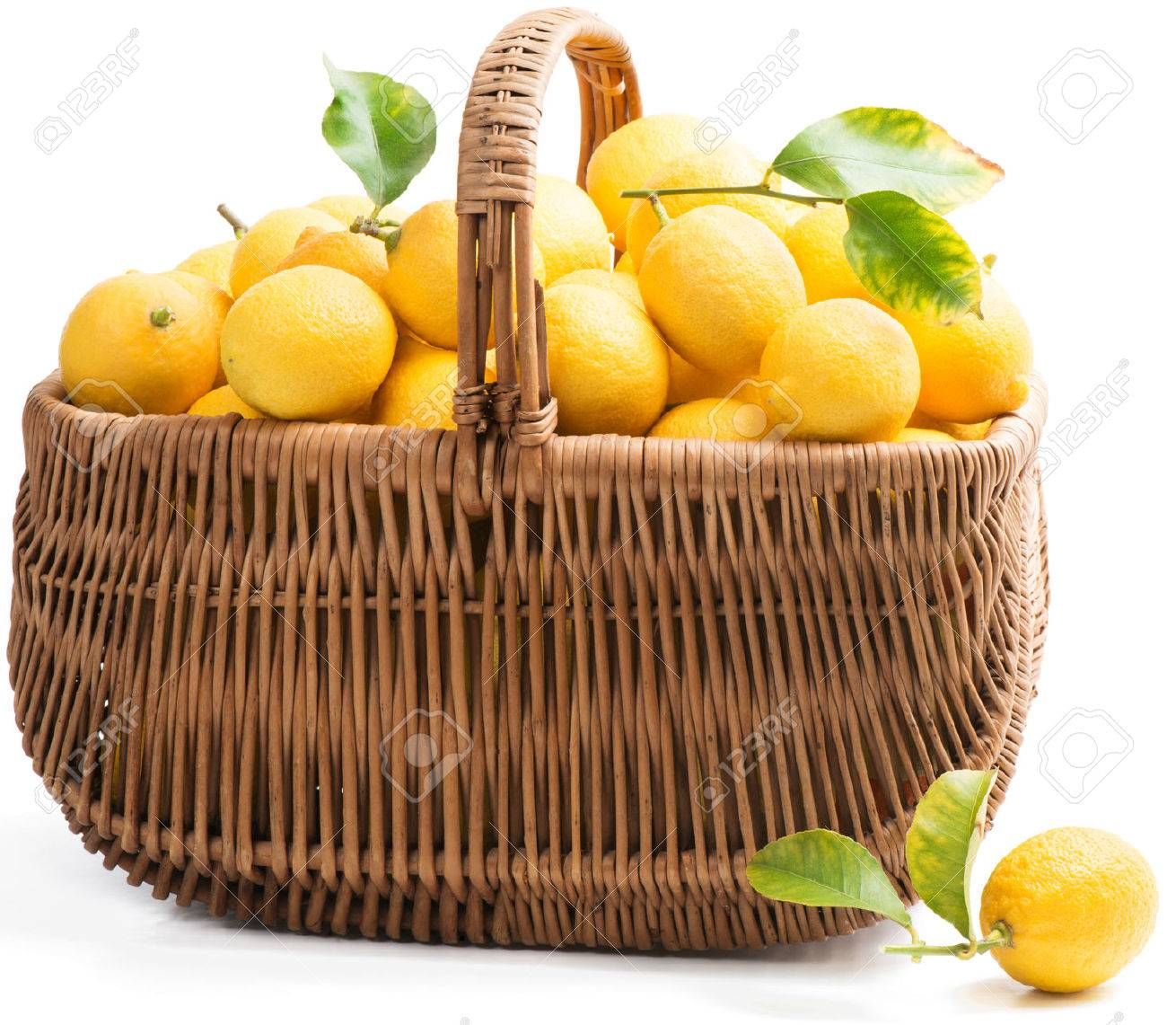 White wicker baskets with handle - A Wicker Basket With A Handle Full Of Fresh Lemons Isolated On A White Background