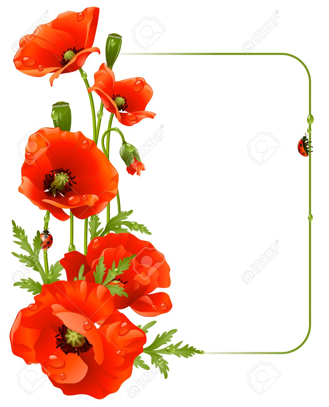 25309 poppy cliparts stock vector and royalty free poppy illustrations red poppy frame illustration mightylinksfo Choice Image