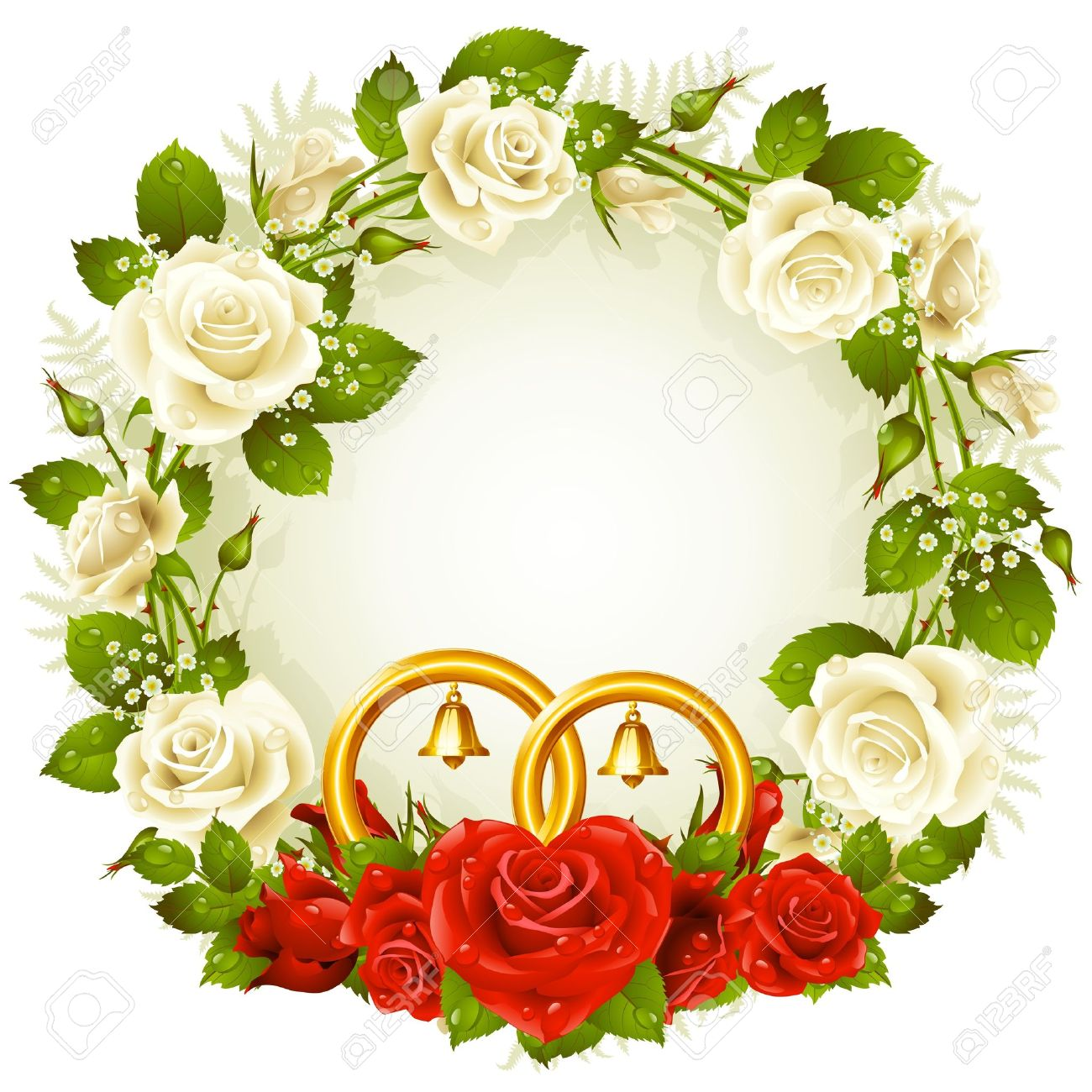 722a6698db15 frame with white and red rose and golden wedding rings Stock Vector -  10610549