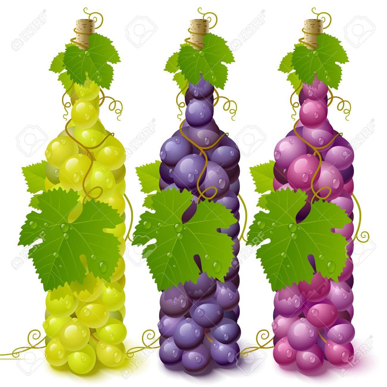 Vine grape bottles Stock Vector - 12477228