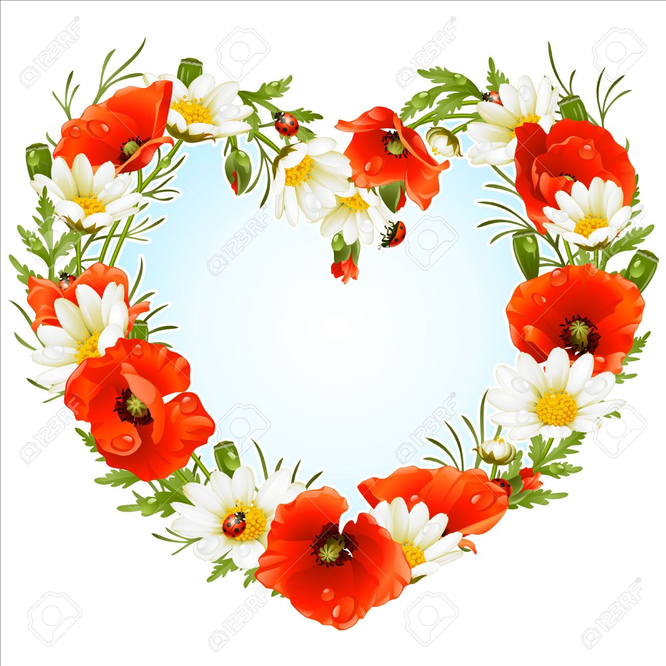 Vector flower frame in the shape of heart. Poppy and Camomile Stock Vector - 12796736