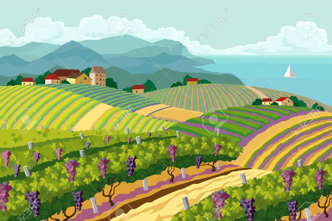 Rural landscape with vineyard and mountain and sea panoram Stock Vector - 22960908