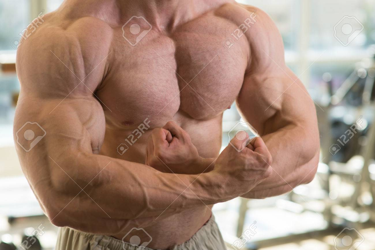 Muscular Torso Strong Mans Torso Picture Of Muscular Torso