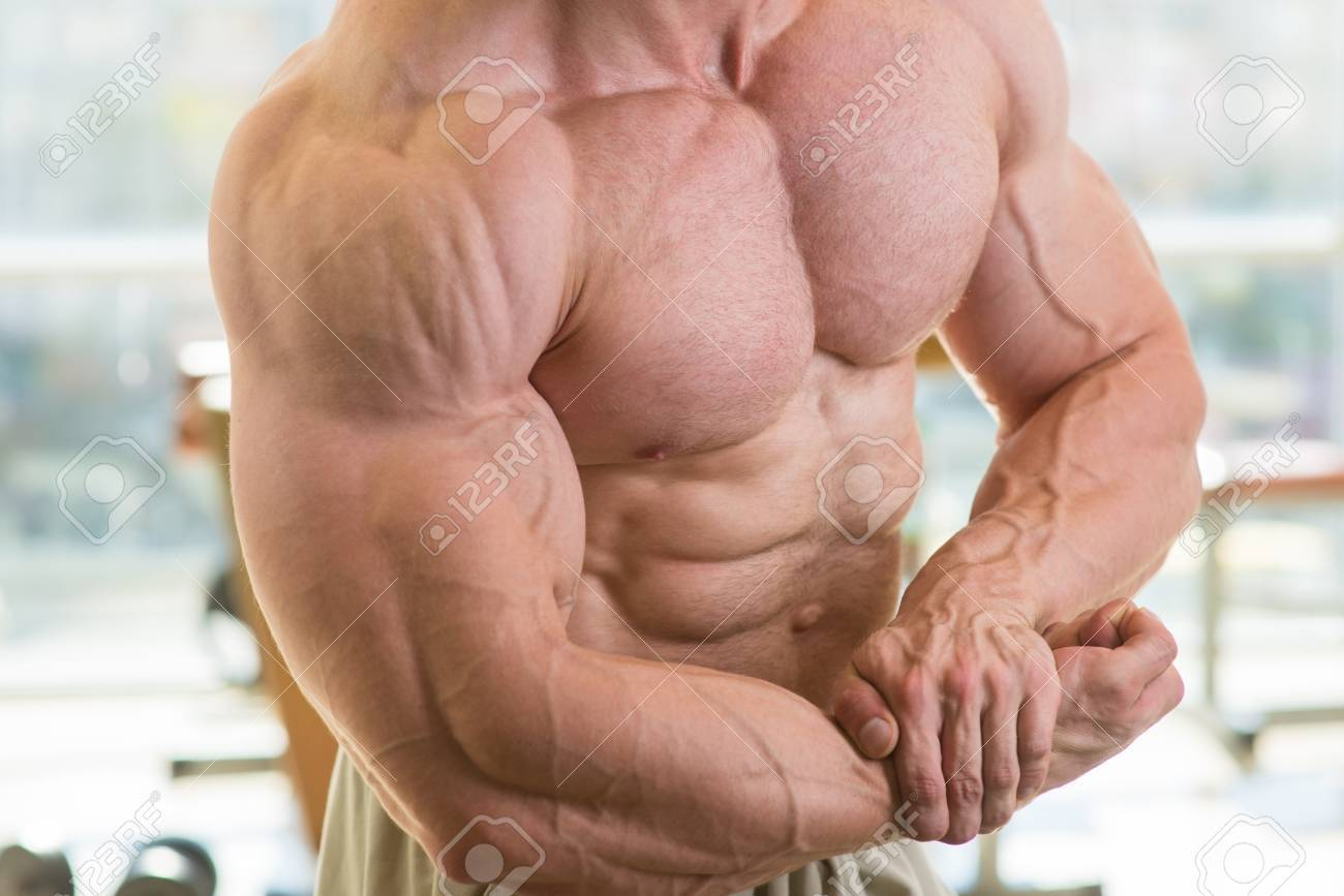 Muscular Torso And Arms Bodybuilder With Huge Muscles Strong