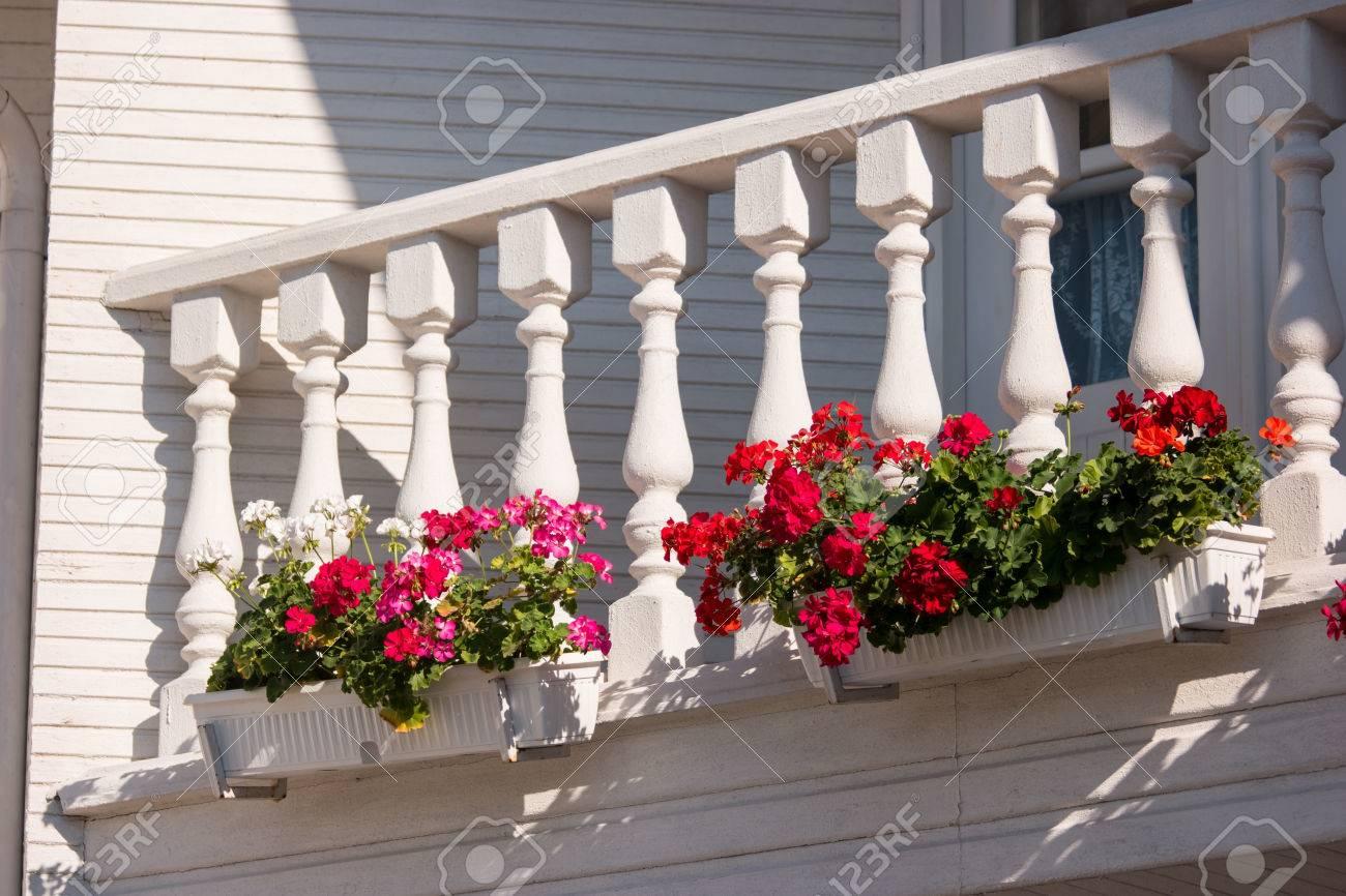 Blumen Auf Dem Balkon Kleine Weisse Saulen Und Gelander Petunien