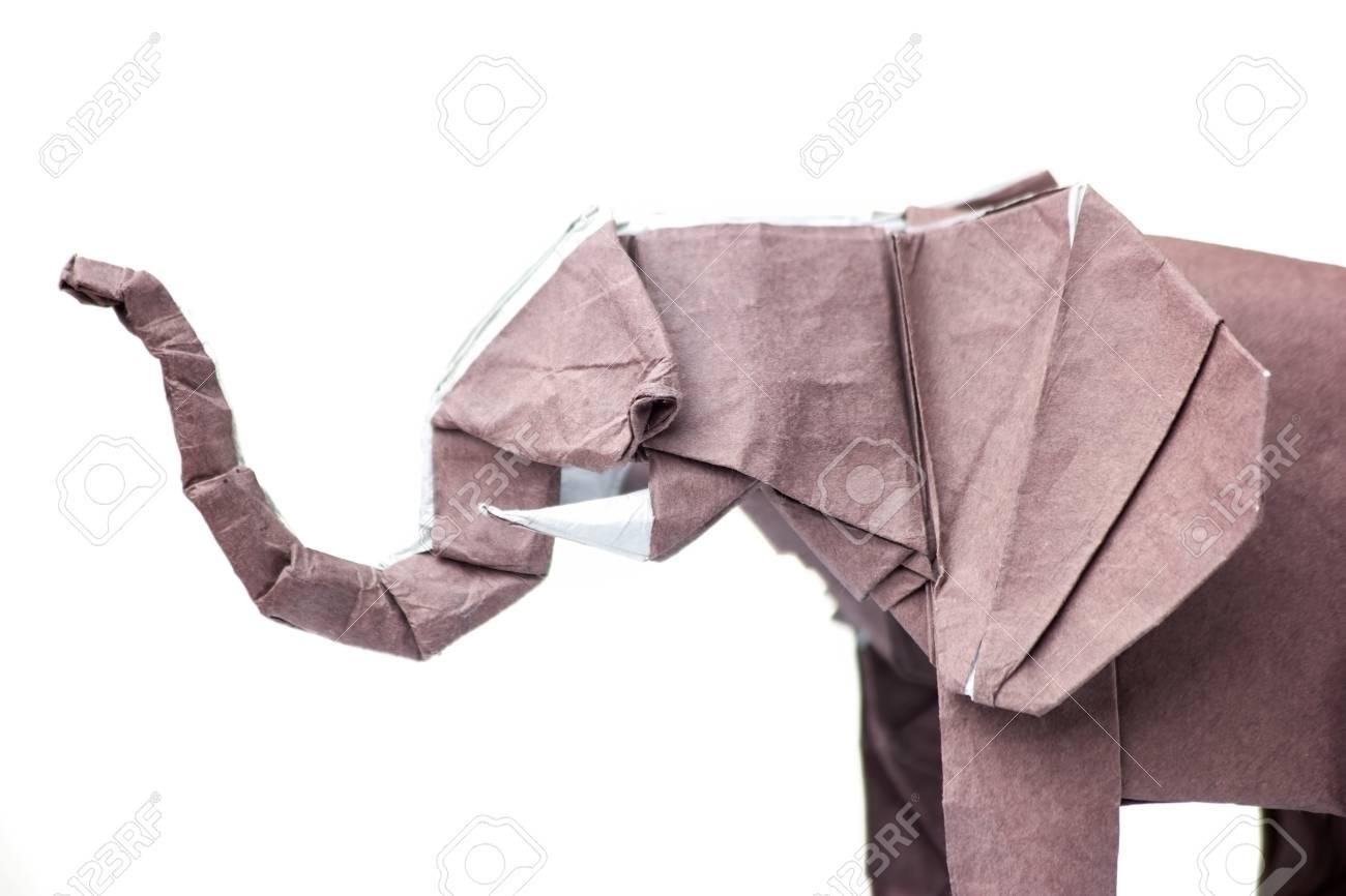 Artist Creates Charming Origami Animals with Unique Wet Folding ...   866x1300
