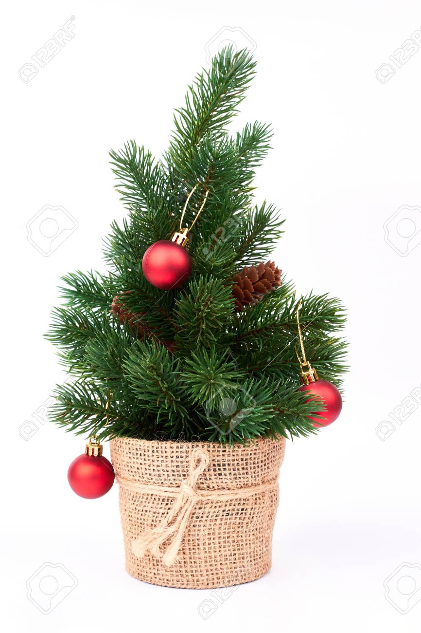 Decorative Christmas Tree With Red Balls Little Green Christmas Stock Photo Picture And Royalty Free Image Image 90678809