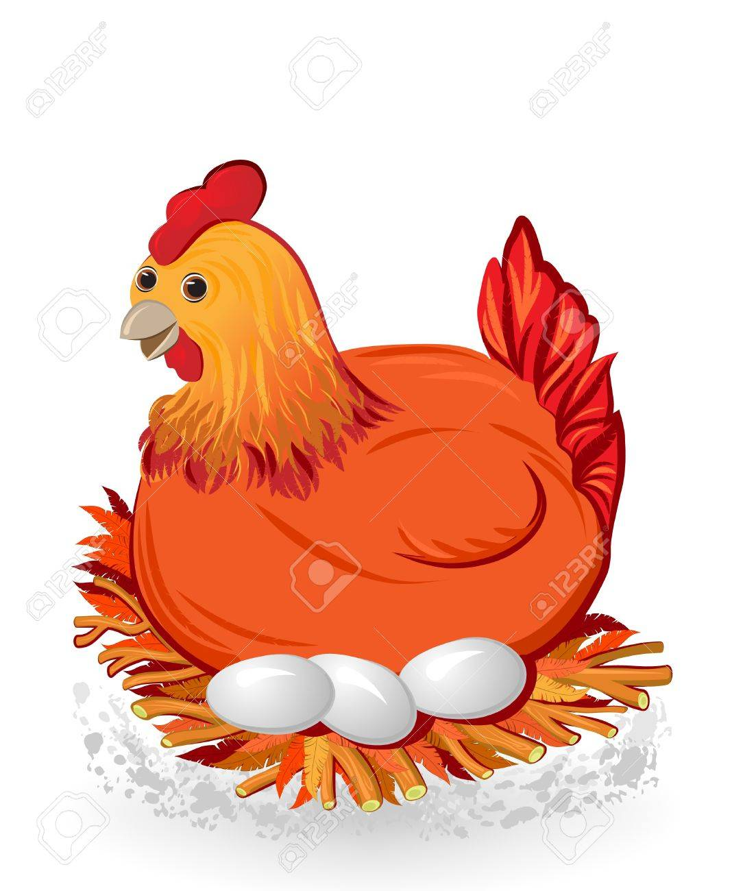sitting chicken with eggs on the nest Stock Vector - 12497042