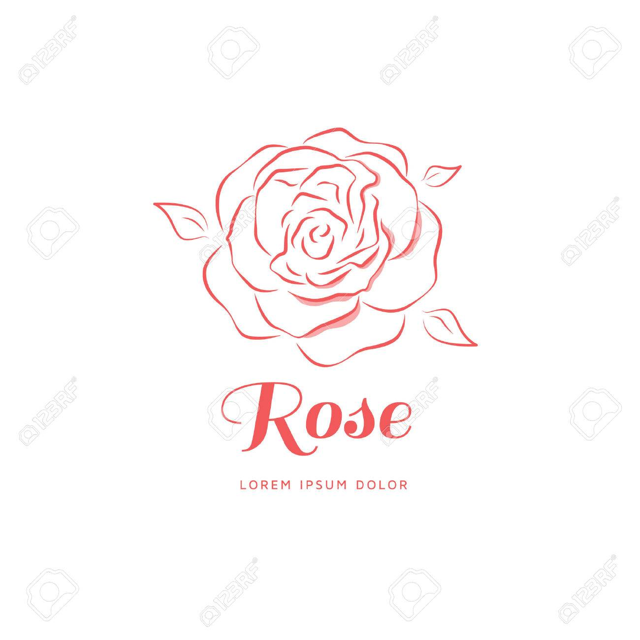 Rose in a linear style. Logo for a beauty salon. Vector illustration - 51330018