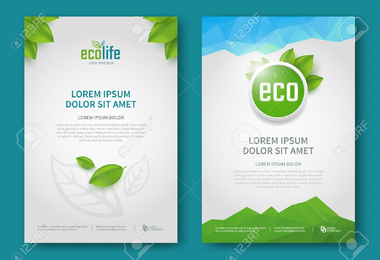 Eco brochure design vector template. Corporate poster with green leaves. - 52215405