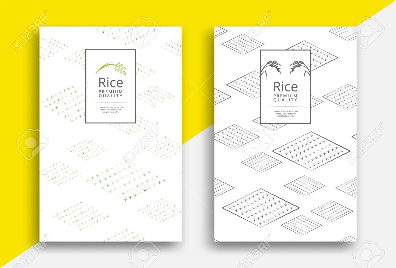 Rice packaging template design with field pattern - 116950499