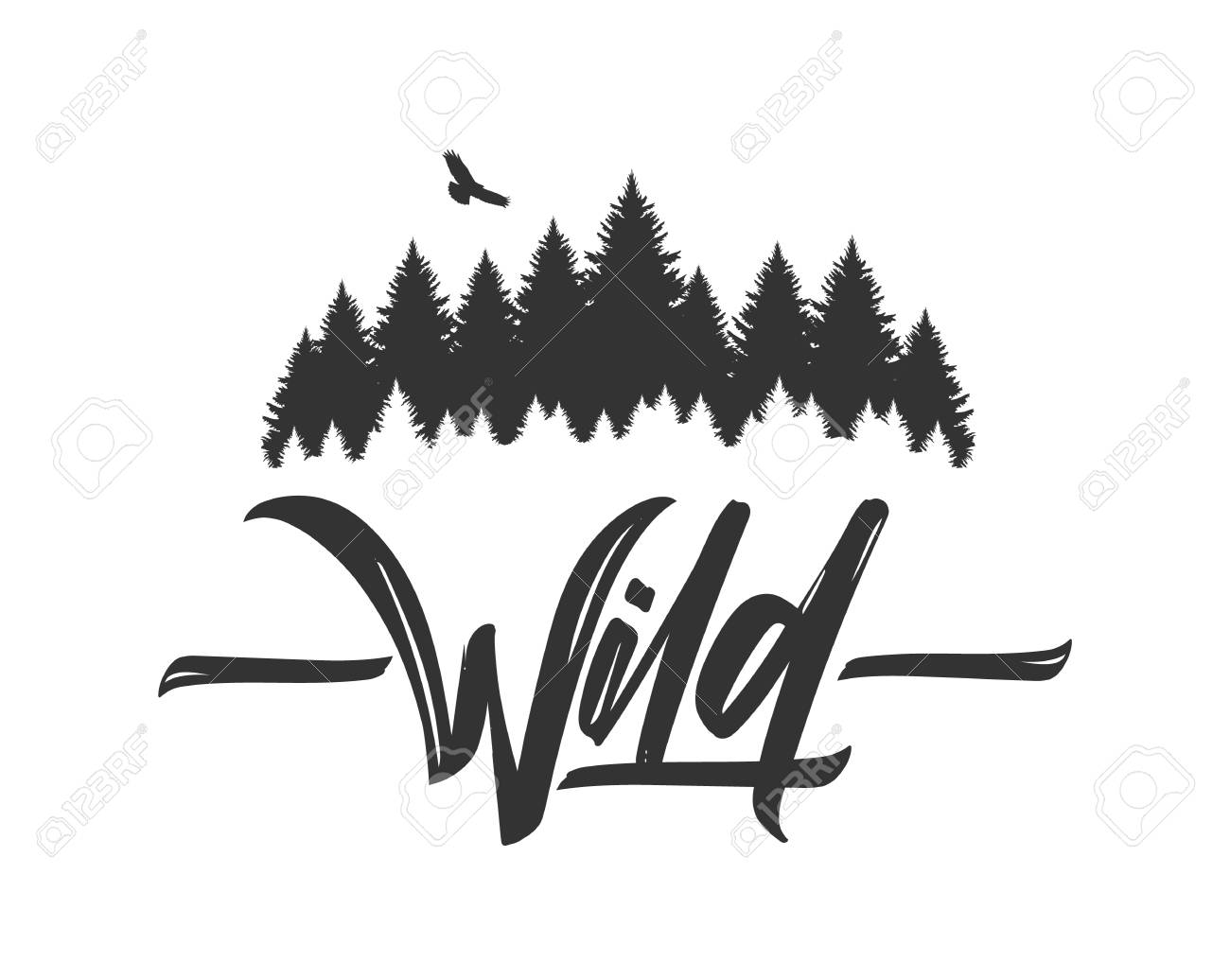 Hand drawn type lettering of Wild with silhouette of Pine Forest and Hawk. Brush calligraphy. Typography design. - 102126605