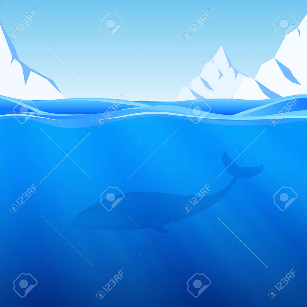 Vector illustration: Water Background with northern sea, icebergs and whale. - 154956251
