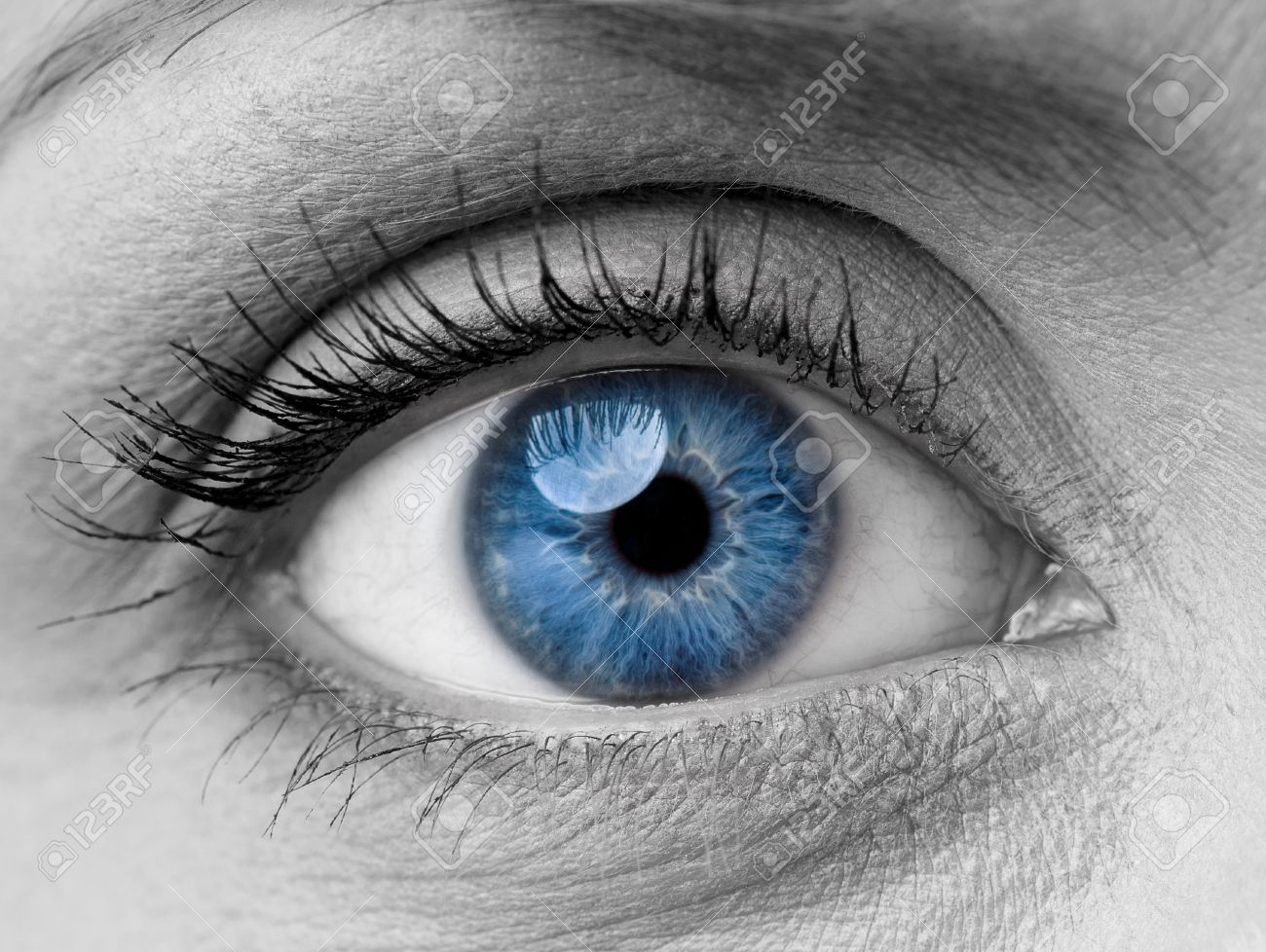 Beautiful blue woman single eye close up black and white stock photo 45264485