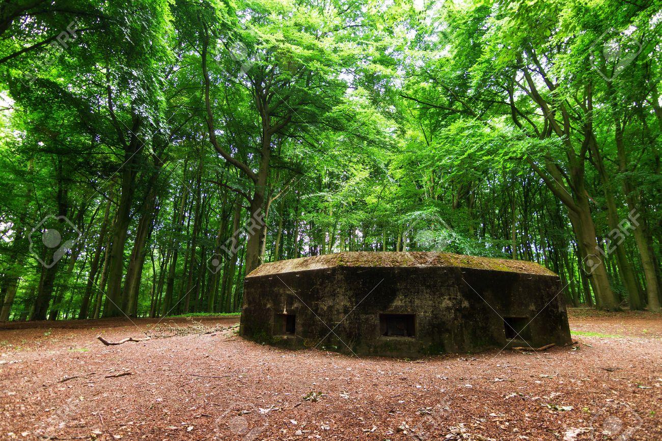 23692678-WW2-bunker-in-the-forest-on-the-Grebbeberg-near-Wageningen-in-the-Netherlands-Stock-Photo.jpg