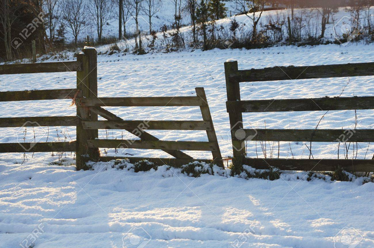 broken wooden fence gate in the snow in a sunset glow Stock Photo - 11870095