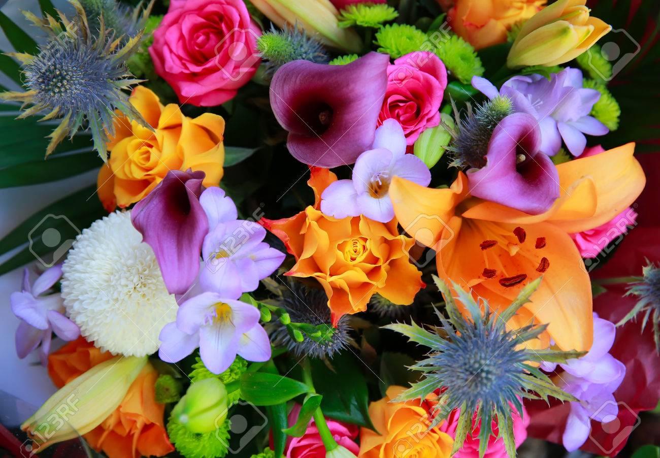 Connu Nice Magnifique Bouquet De Fleurs #8: LE BEAU BOUQUET DE FLEURS  GO66