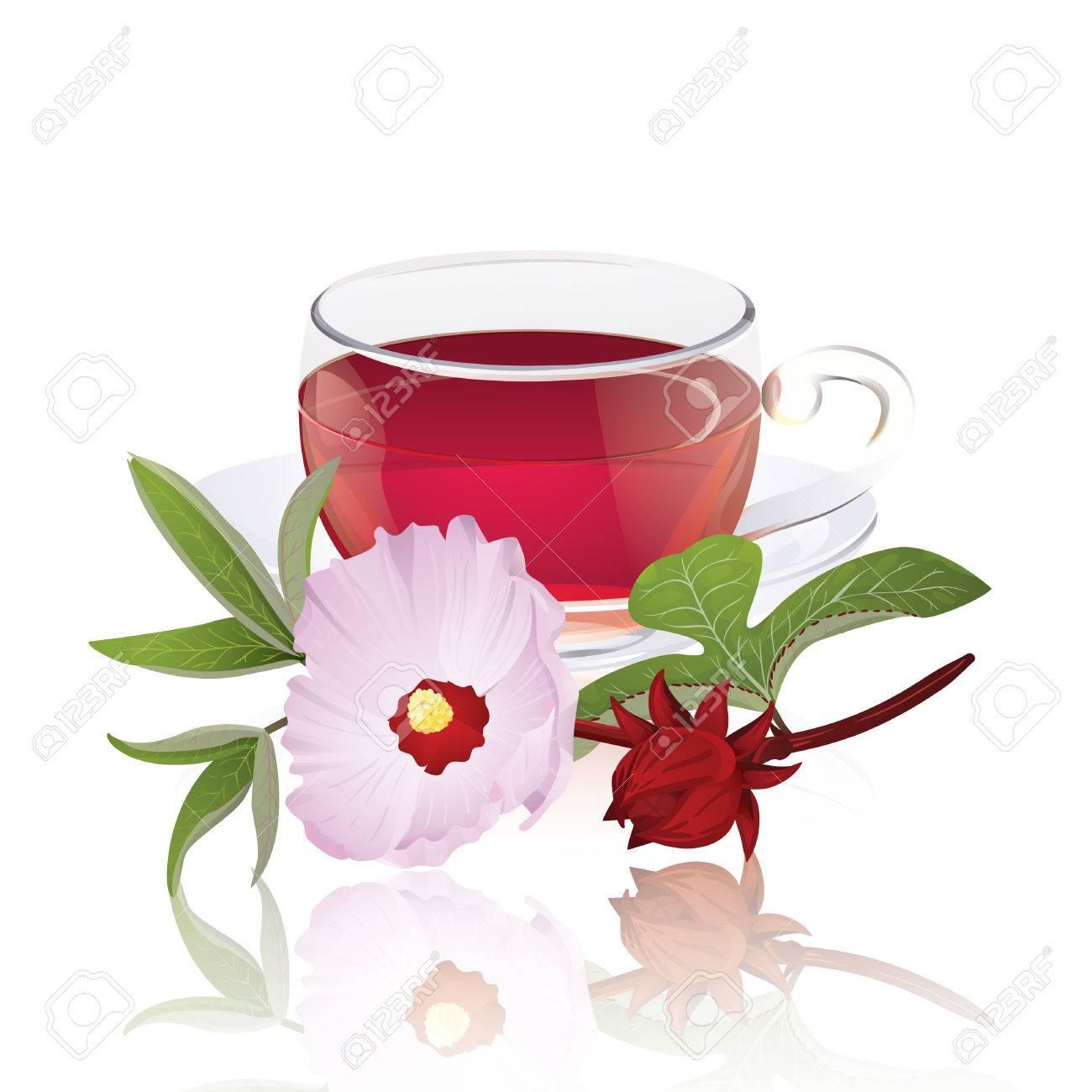 Karkade tea with hibiscus flower hibiscus sabdariffa royalty free karkade tea with hibiscus flower hibiscus sabdariffa stock vector 35818537 izmirmasajfo Gallery
