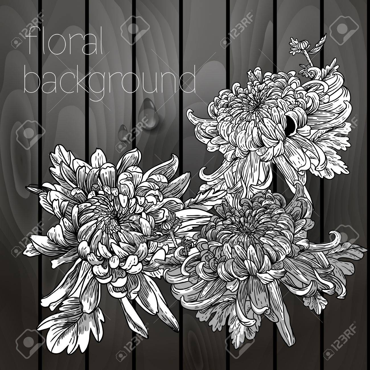 Beautiful flowers on a wooden texture, black white Stock Vector - 21690979