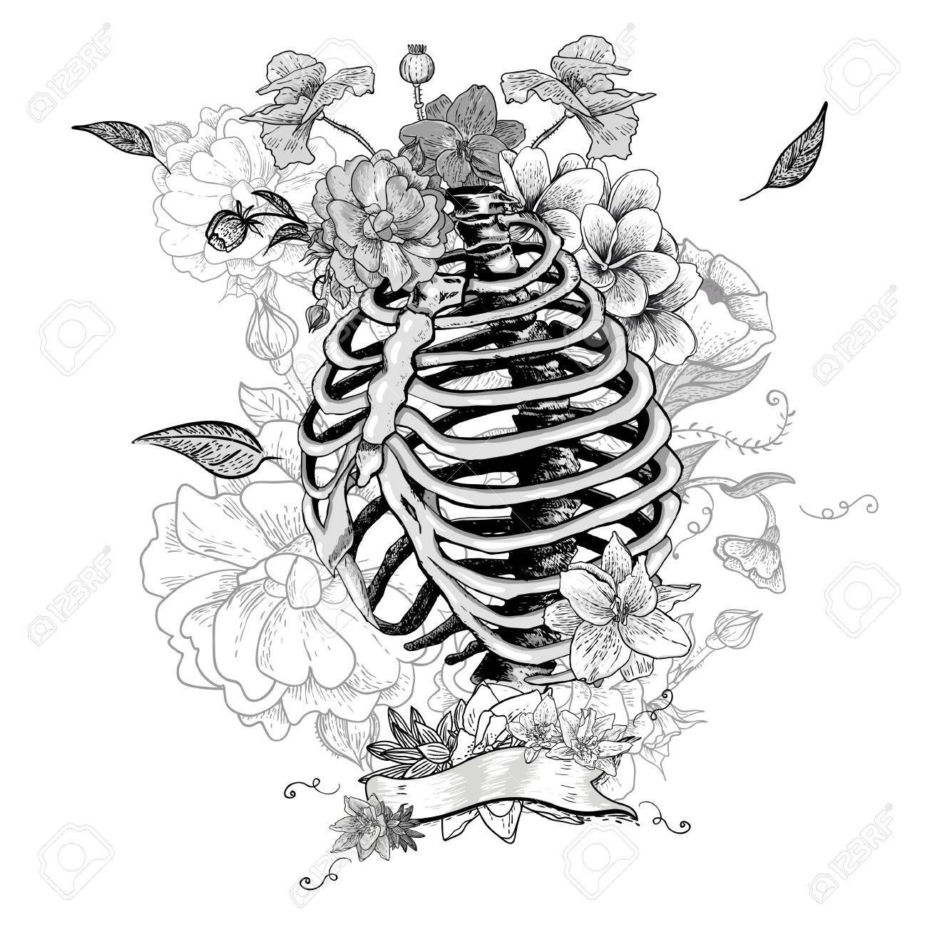 Esqueleto Costillas Y Las Flores, Ilustración Vectorial ...