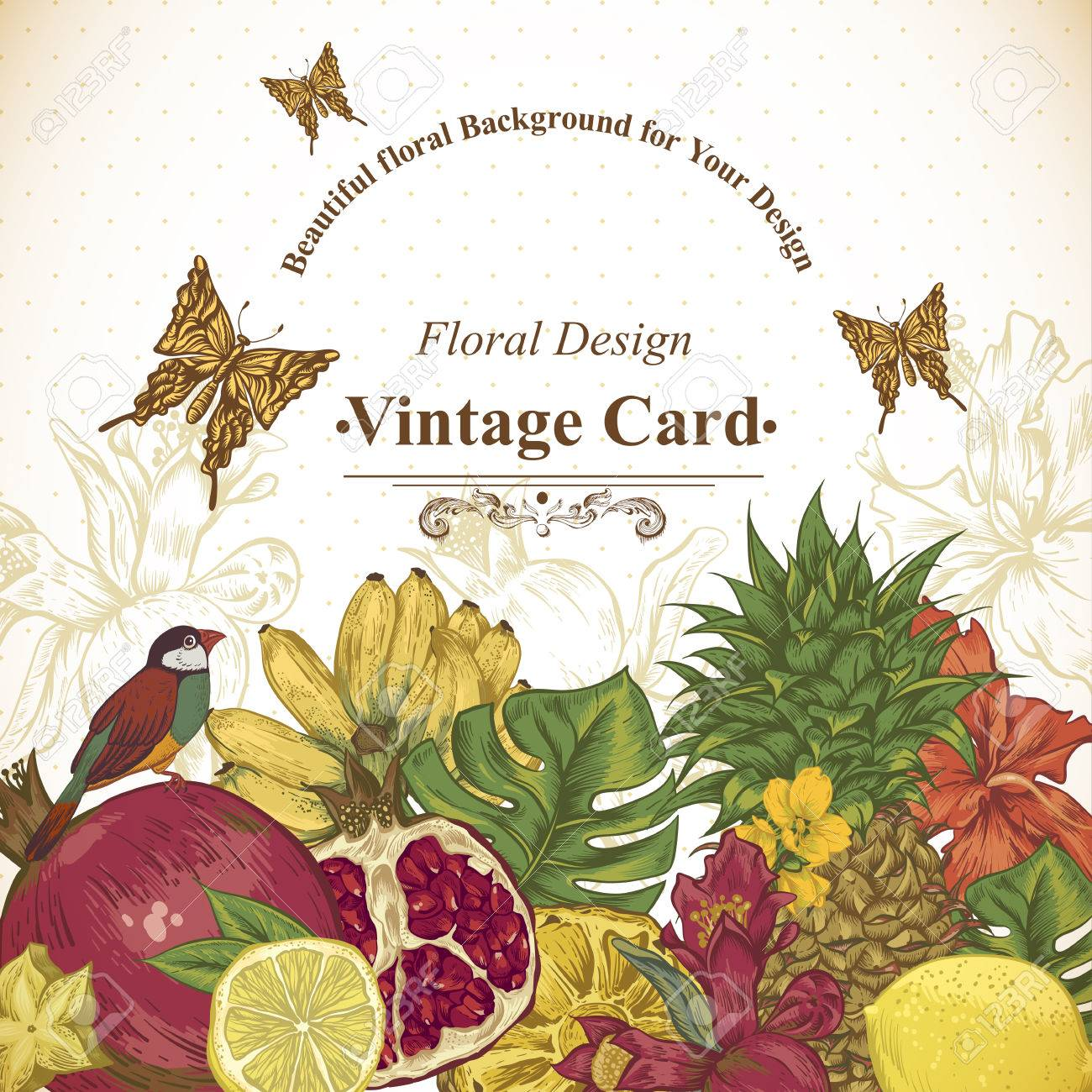 Vintage Greeting Card Tropical Fruit, Flowers, Butterfly And ...