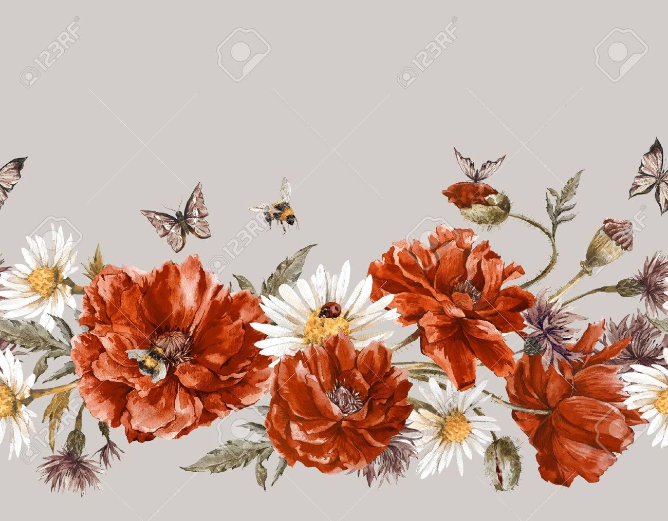 Rode vlinder royalty vrije foto's, plaatjes, beelden en stock ...