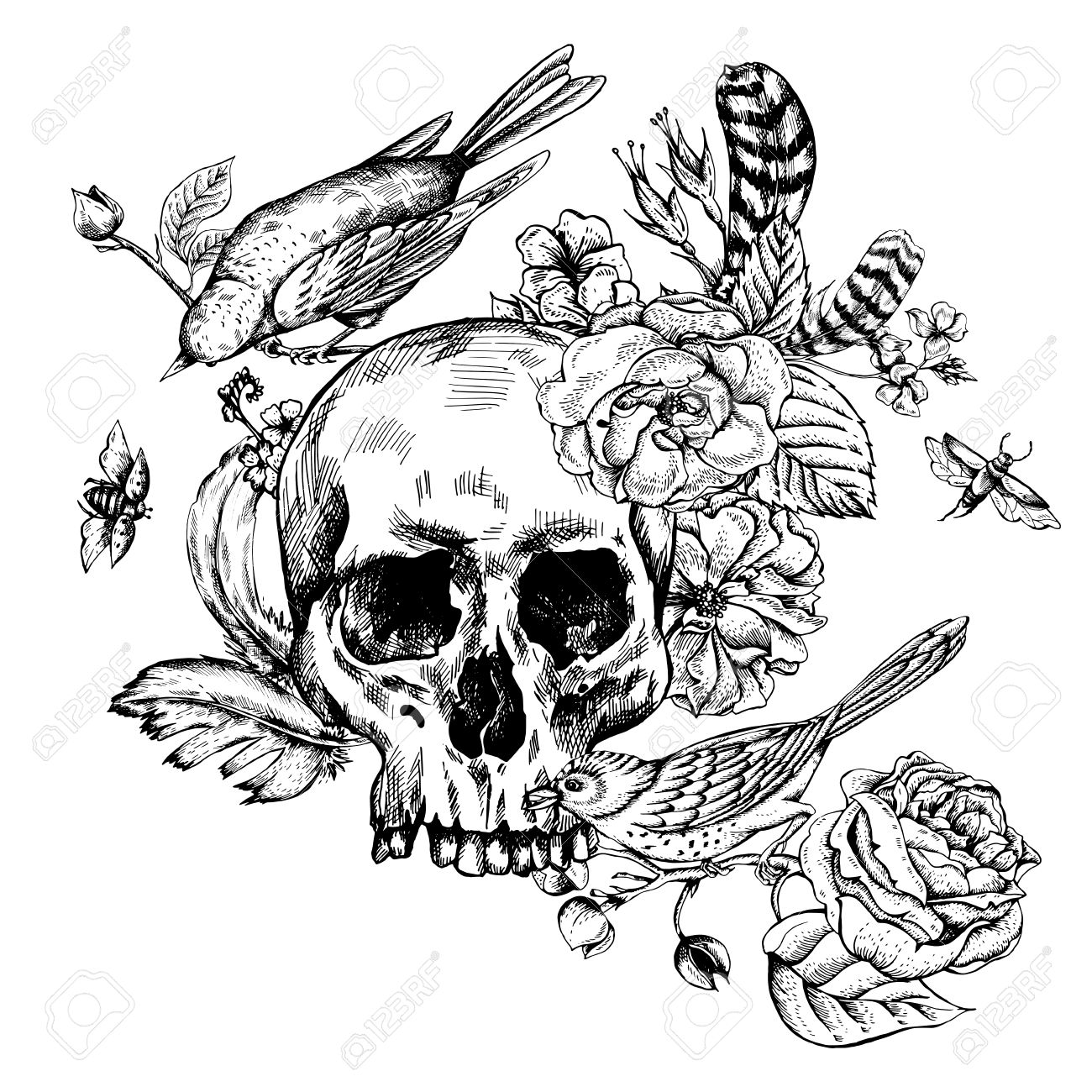 Skull With Flowers Roses Birds And Feathers Black And White