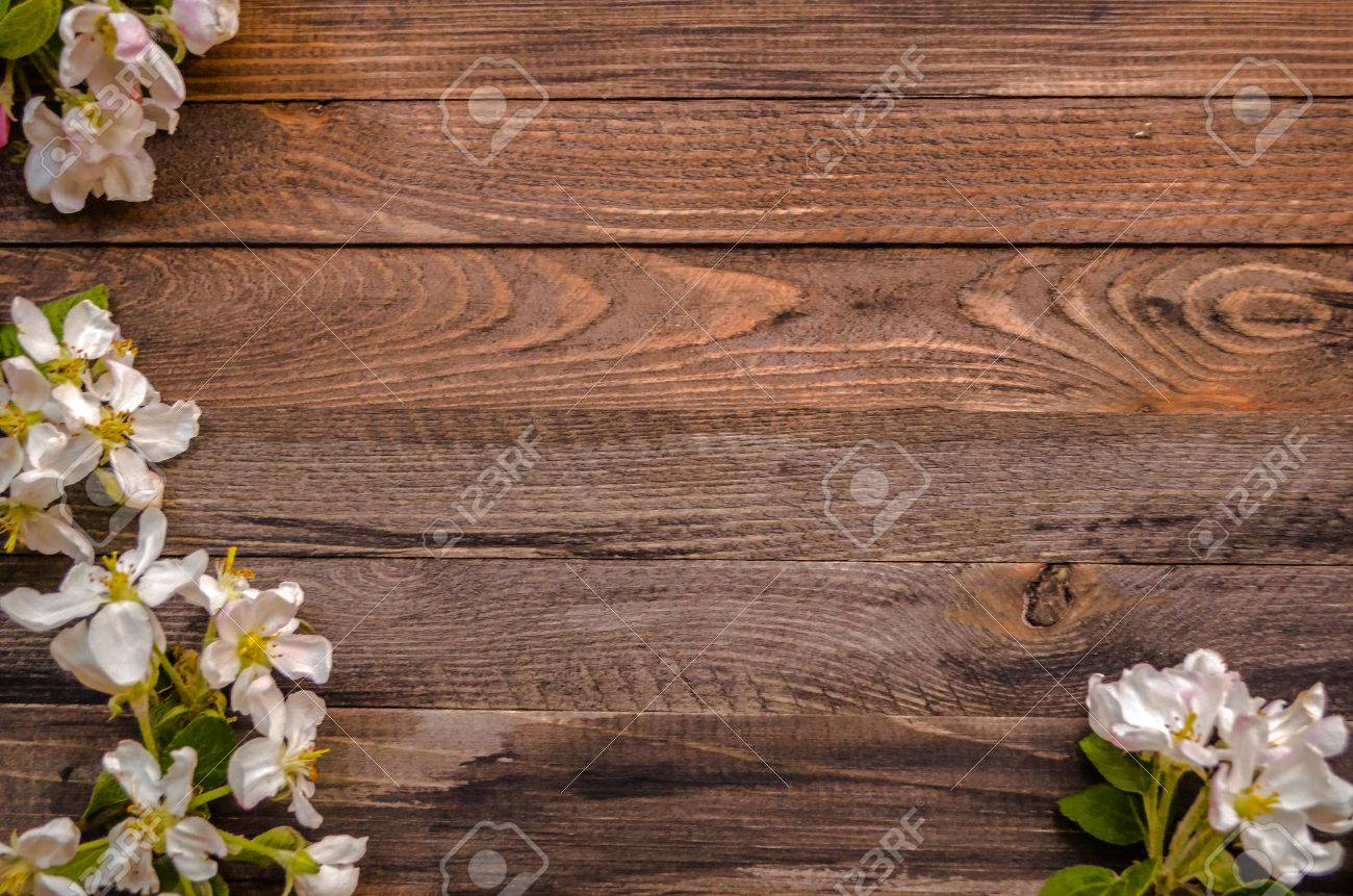 Rustic Wood Background With Natural Style Decorations Spring White Blossom Space For Text