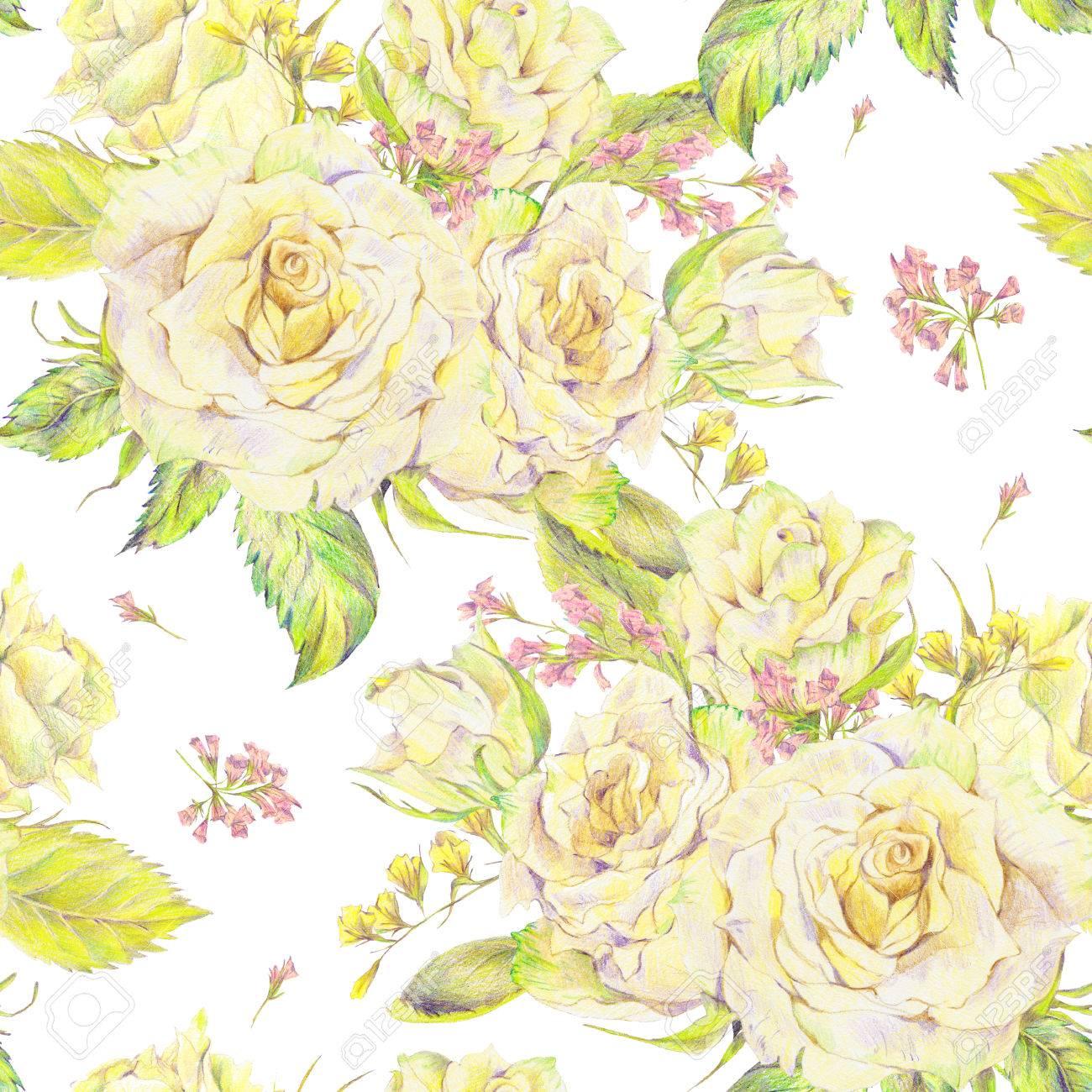 Floral dessinés à la main fond transparent avec bouquet de roses blanches  et de fleurs sauvages, dessin au crayon floral illustration botanique